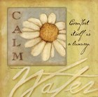 Calm - Daisy by Stephanie Marrott art print