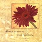 Kindness - Gerber by Stephanie Marrott art print