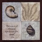 The Voice of the Sea by Stephanie Marrott art print
