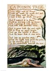 A Poison Tree, from Songs of Experience by William Blake art print