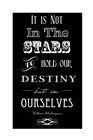 It Is Not In The Stars by Veruca Salt art print
