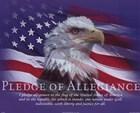 Pledge of Allegiance by Bob Downs art print