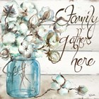 Cotton Boll Mason Jar I Family by Tre Sorelle Studios art print
